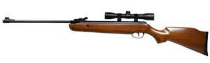 Crosman Remington Vantage Air Rifle