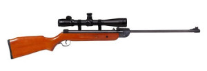 air rifle with scope